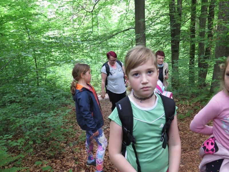 Planinski krožek (Jana Rojc) - pohod na Jermanco